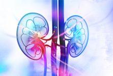 Congreso EIKCS – Iniciando la terapia en el carcinoma avanzado de células renales con VEGFR-TKIs: Consideraciones clínicas