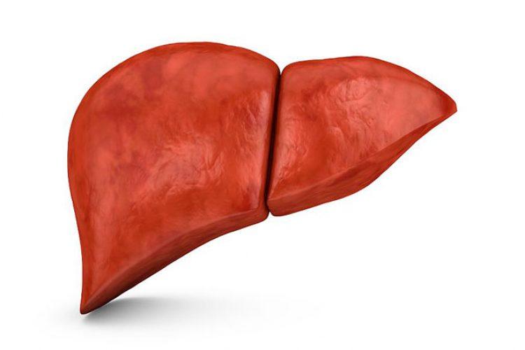 Los aminoácidos en plasma aumentan en la enfermedad de hígado graso no alcohólica