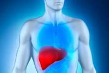 La imagenología de la pelvis tiene un valor limitado en el carcinoma hepatocelular