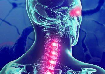 Una travesía por el témpano de la esclerosis múltiple: La vigilancia del peligro futuro