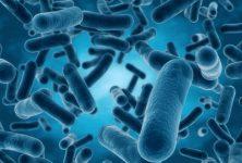 Infecciones fúngicas invasoras