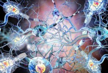 Congreso ECTRIMS – Abordando el sistema inmunológico en la esclerosis múltiple: Visión de un microbiólogo