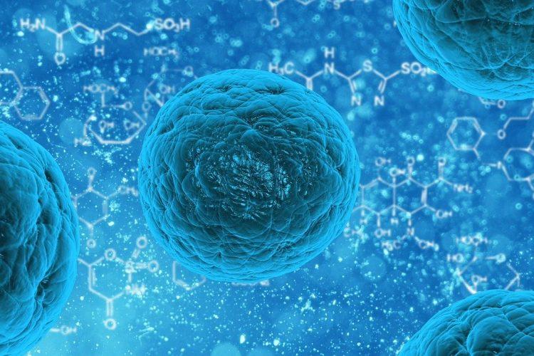 Técnicas de depleción de células T en TCTH