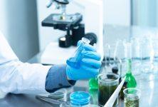 Resultados actualizados del estudio fase IIIb CompLEEment-1 de Ribociclib más Letrozol en el tratamiento de pacientes HR(+) y HER2(-)